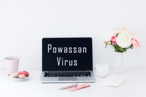 "Feminine work space with words ""Powassan Virus"" on laptop screen."